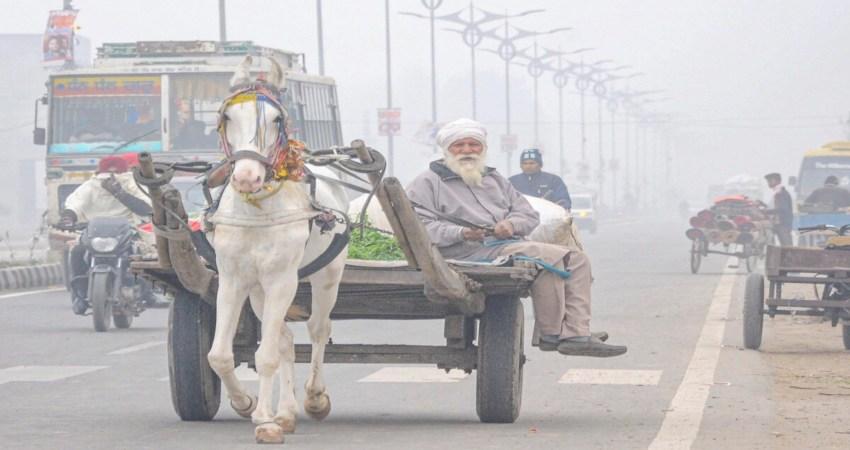 Hisar, Haryana